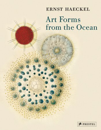 Haeckel: Art Forms from the Ocean