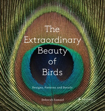 The Extraordinary Beauty of Birds